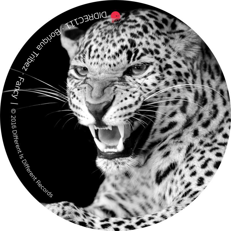 Boriqua Tribez - Fancy, cover