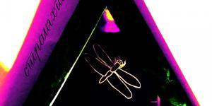 DJ Gruja - Straight Up, album cover